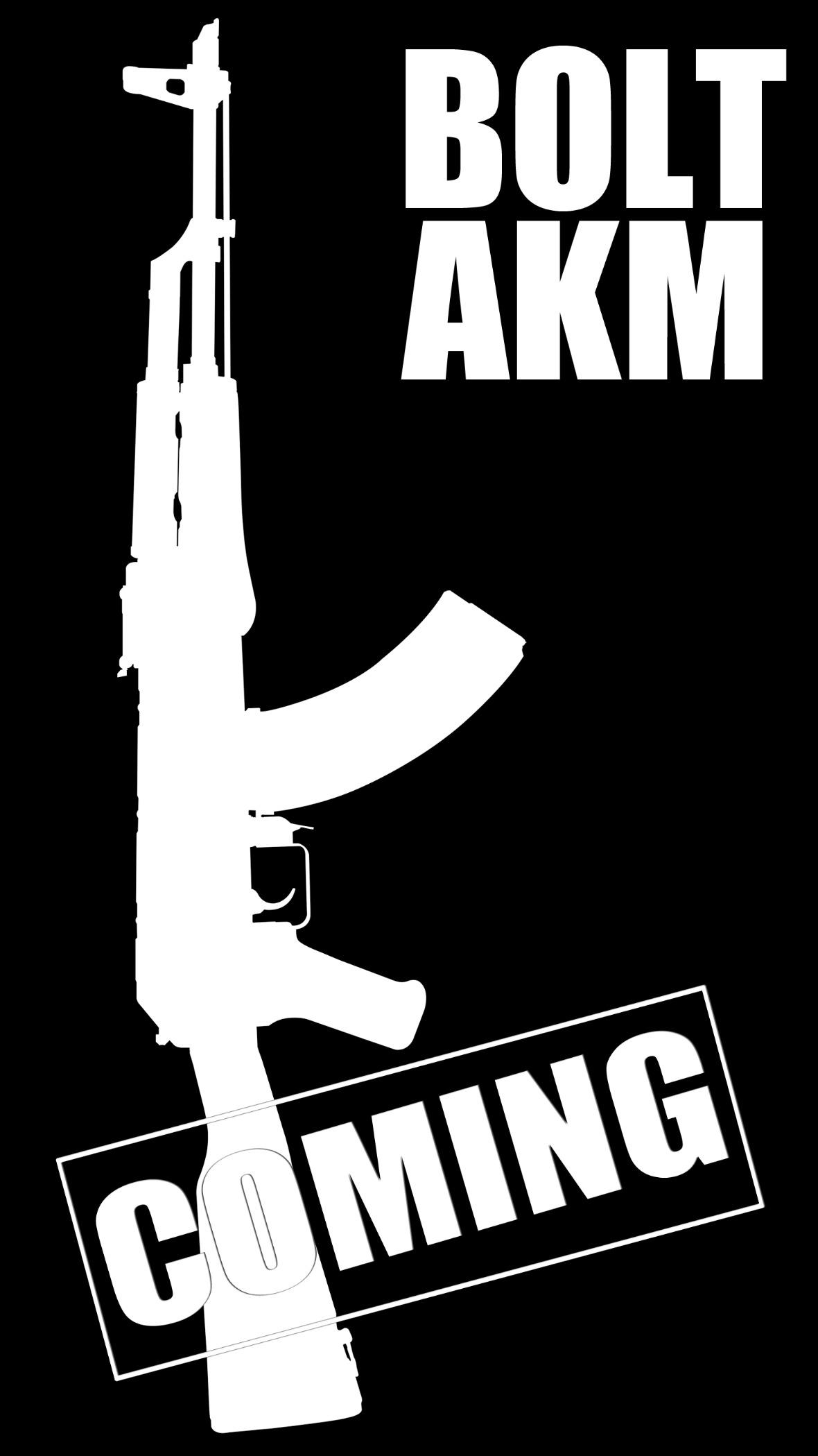AKM coming03.jpg